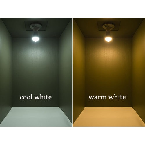 Cool White Led Bulbs Light Bulb Warm Cool White